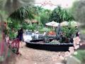 Nhượng lại 2000m2 biệt thự nhà vườn hoàn thiện tại Yên Bài, Ba Vì, Hà Nội