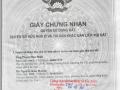 Chuyển nhượng đất Số 3A/1, 3B/1, 3C/1 đường Lộ Vòng Cung, Phường An Bình, quận Ninh Kiều