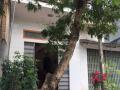 Bán nhà 2 tầng tại thành phố Thái Bình, chính chủ