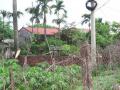Bán 3100m2 đất trang trại 50 năm tại thị trấn Quốc Oai