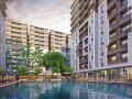 Chuyển nhượng nhà phố Cityland Park Hills 11,9 tỷ. LH 0909490809