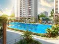Shophouse Novaland, MT đường Hòa Bình, TT quận Tân Phú, giá 7 tỷ/ 100 m2
