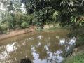Bán đất tại xã Bình Yên, Thạc Thất, thành phố Hà Nội. Giáp khu công nghê cao Hòa Lạc