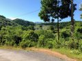 Bán 3,5ha đất trang trại trồng trọt, chăn nuôi tại Kim Bôi, Hoà Bình. Giá 2,9 tỷ
