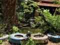 Bán nhà vườn trong khu đặc thù sinh thái trên Đại Lộ Bình Dương, thị xã Thuận An