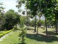 Cần bán lô biệt thự Linh Đàm tự xây, DT 195m2, MT 12m, giá bán 14tỷ, vị trí đẹp, SĐCC