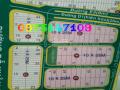 Bán đất dự án Hoàng Anh Minh Tuấn, quận 9, lô biệt thự, DT 10x25m, giá 46 tr/m2