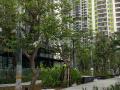 Vista Verde 82m2 2PN giá 3,350 tỷ view đông nam - Bàn giao thô, xem nhà trực tiếp 0931 257 668