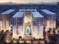 Chuyển nhượng gấp căn hộ Cityland Park Hills, 2PN block P5, giá 2,6 tỷ. LH 0908 151 779