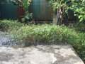 Chính chủ cần bán gấp mảnh đất 51m2 phường Dương Nội, Hà Đông, ô tô sát cửa