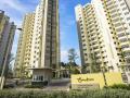 Cho thuê căn hộ Canary Aeon Mall Bình Dương Vsip 1 giá rẻ. LH 0936535339