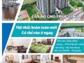 Cho thuê căn hộ Docklands Sài Gòn tại Nguyễn Thị Thập quận 7. Giá 14 triệu/tháng