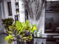 Căn 1PN duy nhất đang bán, cao ốc Hưng Phát, nhà cực kì đẹp, LH: 0902.929.656 (zalo/viber)