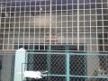 Bán nhà hẻm Khánh Hội DT: 3.7 x 13m (nở hậu 6.3m), giá 3tỷ9