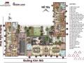 Bán lại căn hộ Liễu Giai Metropolis. Xem nhà thực tế, chọn căn - tầng từ 1 - 4 ngủ, LH: 0916568855
