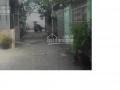 Nhà cho thuê tại phường 8, quận Gò Vấp