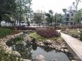 Carnation Homes - SV14 từ Gamuda. Giai đoạn biệt thự cuối cùng