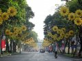 Bán nhà HXH đường Nguyễn Huy Tưởng đường Lam Sơn, quận Bình Thạnh
