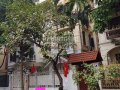 Cần tiền bán gấp biệt thự Trung Hòa Nhân Chính Câu Giấy Hà Nội, khu vip nhất thủ đô. LH 0969340786