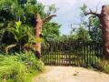 Nhà vườn 1000m2, Lê Văn Lương, Nhà Bè, 20x50m lô góc. 5,5 tỷ