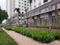 Cho thuê shophouse Richstar, MT Hòa Bình, diện tích 100 m2, giá 30tr/th, gọi ngay 0933830850