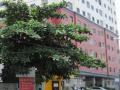 Cho thuê nhà nguyên căn 1T, 2 lầu đường Xô Viết Nghệ Tĩnh. DT đất: 6m x 25m, giá thuê: 56tr/tháng