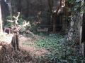 Bán 33.3m2 đất thổ cư(đất ở) tại thôn An Hạ, xã An Thượng, Hoài Đức
