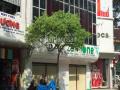 Bán nhà 2 MT Trần Khắc Chân góc Trần Quang Khải Q1. DT: 9 x 25m, 40 tỷ