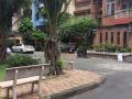 Bán gấp trước Tết nhà HXH Nguyễn Trọng Tuyển, P8, Q. Phú Nhuận, DT: 11x20m, giá 26 tỷ TL