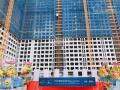 Tôi cần tiền bán gấp căn hộ Sài Gòn Gateway-Quận 9, giá chỉ 1.8 tỷ/2PN, ký gửi căn cho bạn Hương