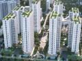 Chuyển nhượng lại 9 căn thuộc chung cư An Bình City, giá tốt nhất thị trường, liên hệ: 0911.530.588