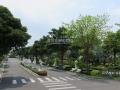 Cần bán lại gấp đất mộ Gia tộc tại nghĩa trang cao cấp Phúc An Viên quận 9, giá cực ưu đãi