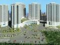 Tôi cần sang nhượng căn hộ mới vô ở liền 50 năm Lê Thành Tân Tạo, giá 190 triệu