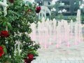 Chính chủ bán liền kề vườn hồng Eden Rose đẹp nhất Nguyễn Xiển