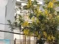 Bán nhà 1 trệt 3 lầu mặt tiền Lê Thị Riêng 4x12,5m, sổ hồng riêng