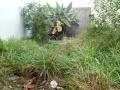 Bán lô đất biệt thự 8 x 20m nở hậu tại KP 1 Tân Hiệp - Biên Hòa (sổ riêng thổ cư 100%)