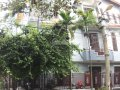 Nhà Hòa Cường Nam gần cầu Tuyên Sơn đẹp cho khách ở tết