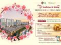 Mở bán Shophouse Khai Sơn Long Biên 3 tỷ nhận nhà, tặng 50tr, tặng xe 1,5 tỷ DT: 90m2, 0904615286