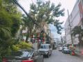 Khu biệt thự Trần Hưng Đạo, nhà 3 lầu lung linh, NH: 4.4x12m, P. 1, Quận 5, vào ở ngay