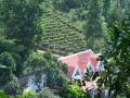 Cần bán trang trại gần 2ha có sẵn villa 200m2 ở Lương Sơn, Hòa Bình