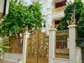 Chính chủ bán biệt thự sân vườn, DT sàn 365m2, Q Tân Bình, LH: 0985771133