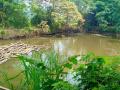 Cần bán 2200m2 nhà đất xã Yên Bài, phù hợp làm nhà vườn, và nghỉ dưỡng giá 280tr/1 sào, 0971274648