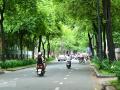 Cho thuê CHDV đường Cách Mạng Tháng 8, ngay vòng xoay Phù Đổng, Q.1, DT 4x20m, 4 lầu, giá 80tr/th