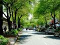 Cho thuê tòa nhà 5 tầng mặt tiền Nguyễn Thái Bình, quận 1, DT 4x18m, giá 115 triệu/tháng