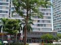Cần bán căn hộ 2PN, Citi Home ở Cát Lái, Q2, giá 1,55 tỷ đã có sổ