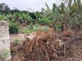 Chào bán 424m2 đất tại thôn An Lĩnh, xã Lê Lợi, Chí Linh, Hải Dương