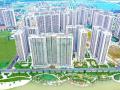 PKD: 0988 652 296, độc quyền quỹ căn hộ giá rẻ nhất tại Vinhomes Ocean Park Gia Lâm