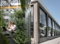 Không gian văn phòng xanh mát như một khu vườn ở Hà Lan