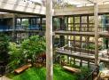 Khám phá khu vườn nhiệt đới trong tòa văn phòng ở Ấn Độ