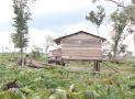 Xây lán trại trên đất nông nghiệp giao khoán có vi phạm không?